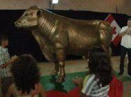 insolito: inmortalizan al toro con que fidel castro arruino la ganaderia cubana