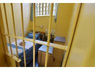 sudafrica: corte de apelaciones fallara sobre pistorius