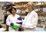 cientificos debaten limites y etica de alteracion genetica