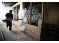 lo ultimo: brasil autoriza prueba sobre zika y otros virus