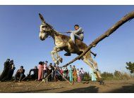 una burra que salta, alcanza fama en pueblo egipcio