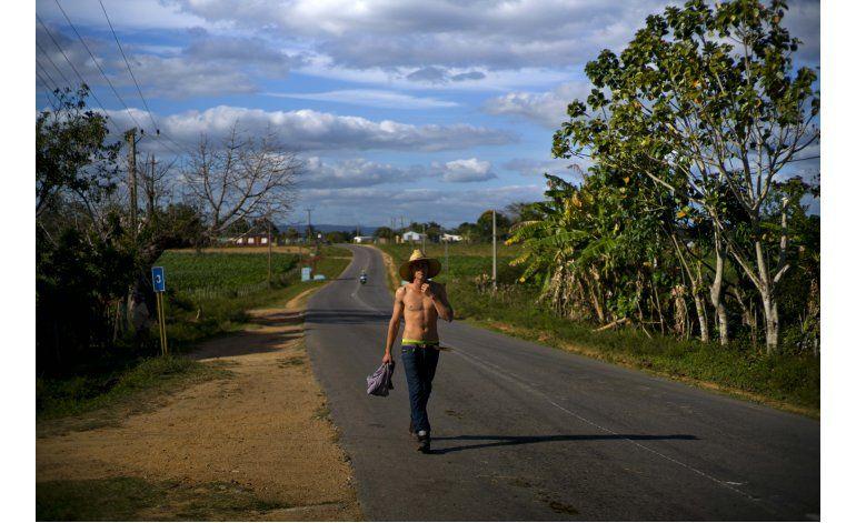 FOTOS AP: El cultivo de tabaco en Cuba, atracción turística