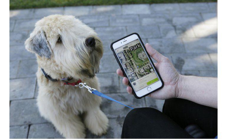 Tecnología ayuda a mantener mascotas sanas y conectadas