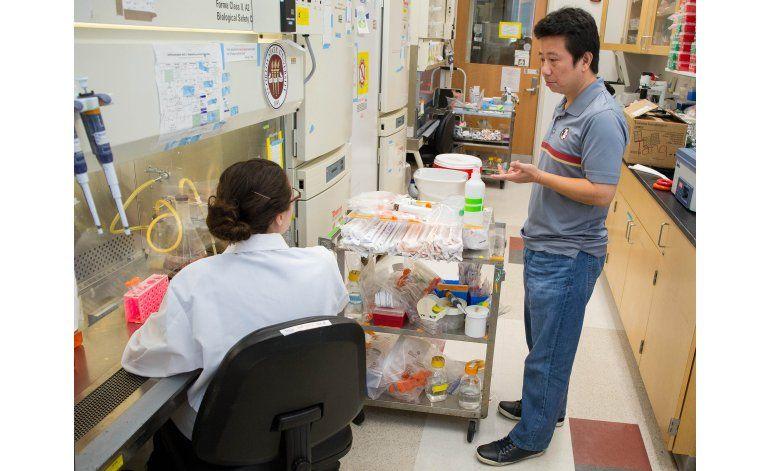 Hallan más evidencia de riesgo del zika para embarazadas