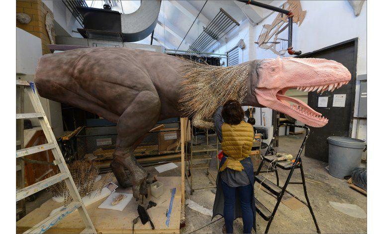 Museo explora relación entre los dinosaurios y las aves