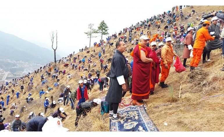Bután festeja bebé real plantando árboles
