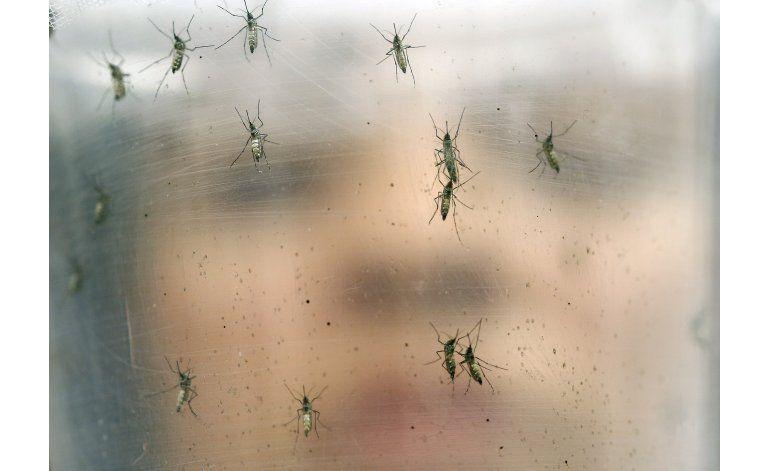 Preguntas y respuestas del virus del zika en América Latina