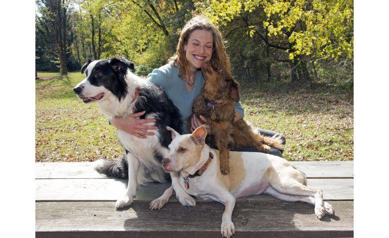 Programa de TV da oportunidad de rehabilitación a perros