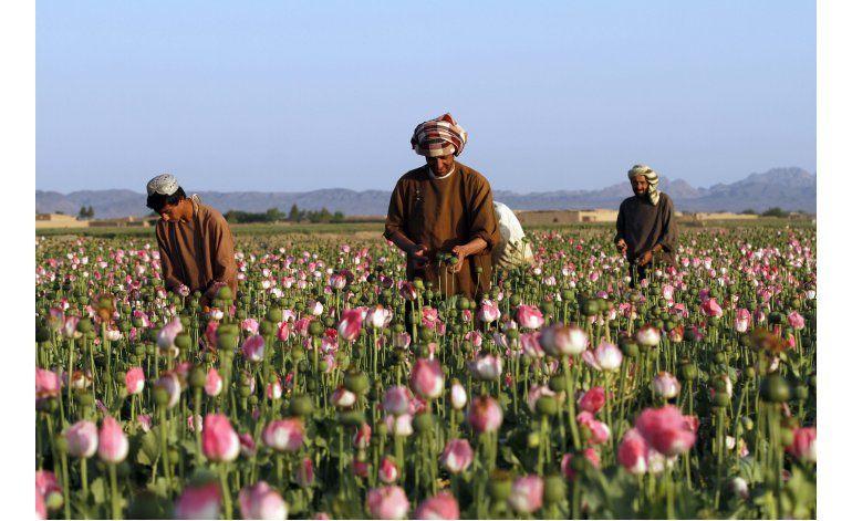 El Talibán inicia su ofensiva de primavera en Afganistán