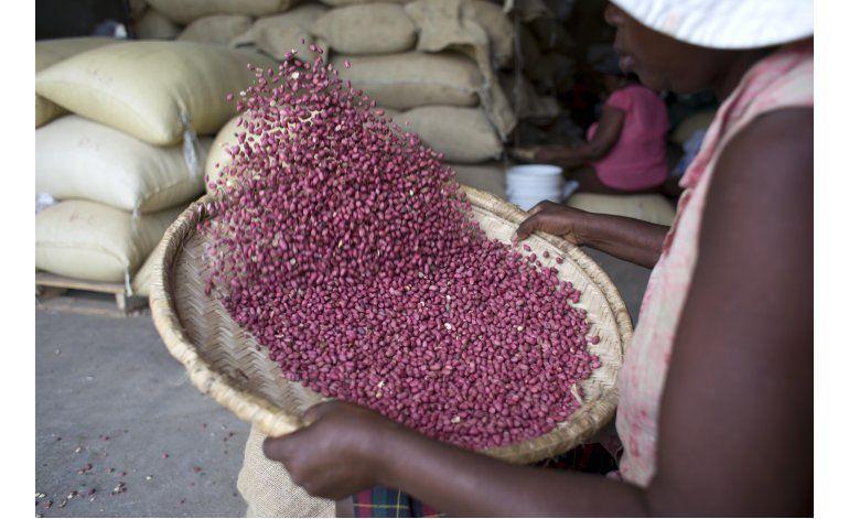 Donaciones de maní de EEUU causan desazón en Haití