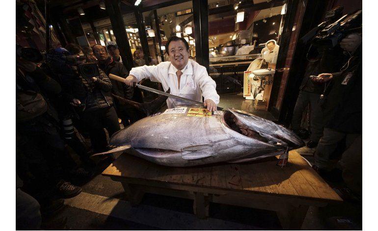 Informe pinta un sombrío futuro para el atún de aleta azul