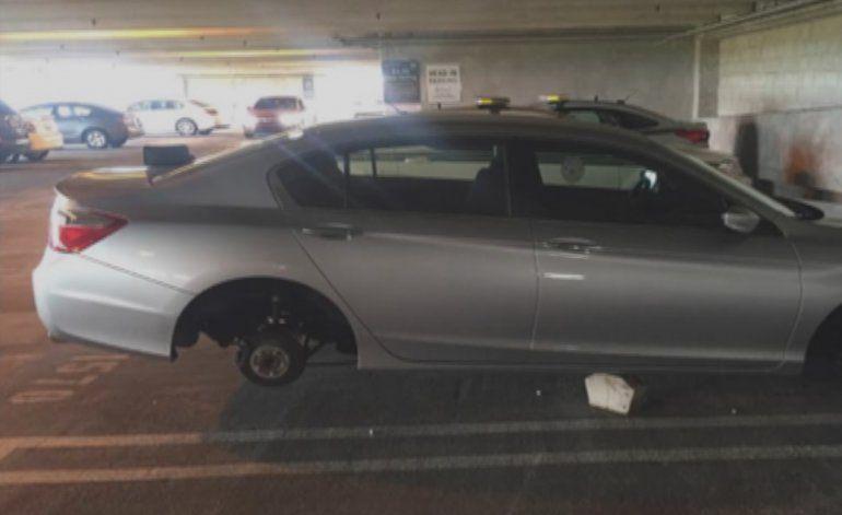 Vandalizan auto en el SW de Miami