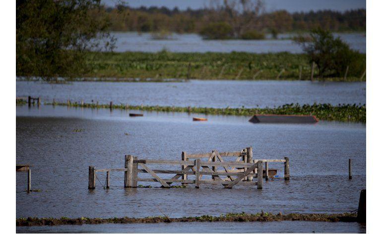 Familias y campos diezmados por inundaciones en Argentina