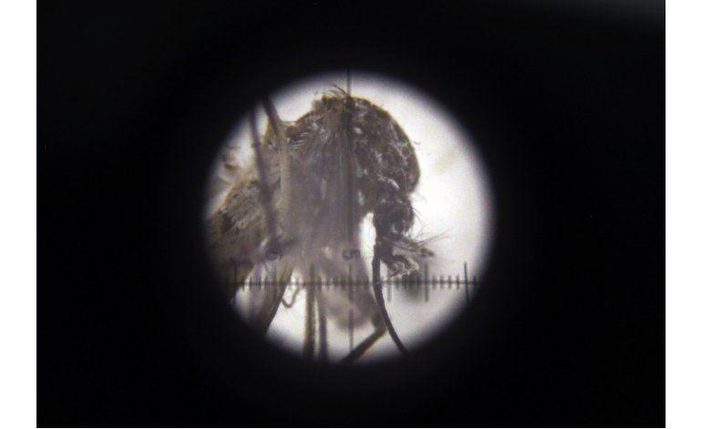 Puerto Rico revela primera muerte relacionada con zika