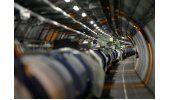 Comadreja paraliza el Gran Colisionador de Hadrones