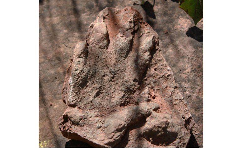 España: hallan huella de dinosaurio de 230 millones de años