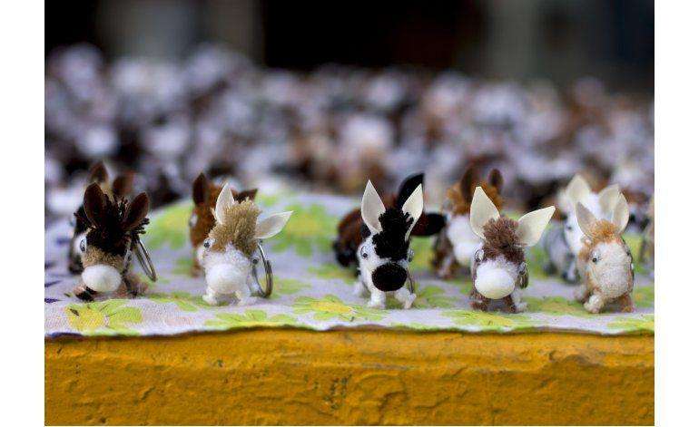 Un pueblo mexicano celebra un festival centrado en burros