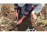 voluntarios sirios improvisan metodos contra las minas