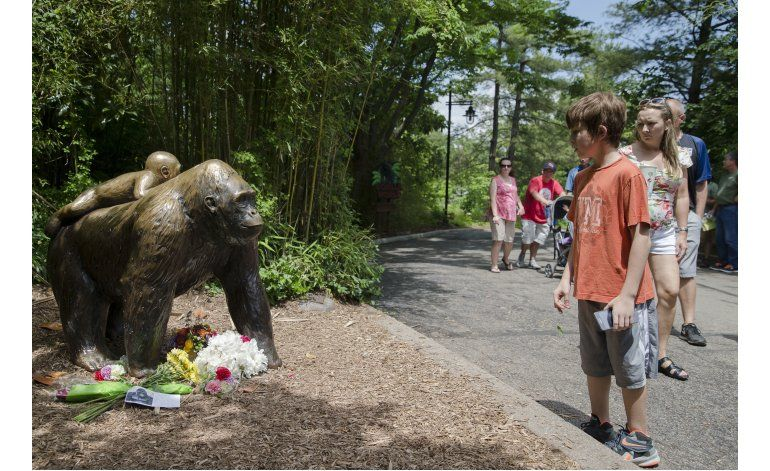 Organizan vigilia en recuerdo del gorila sacrificado en Ohio