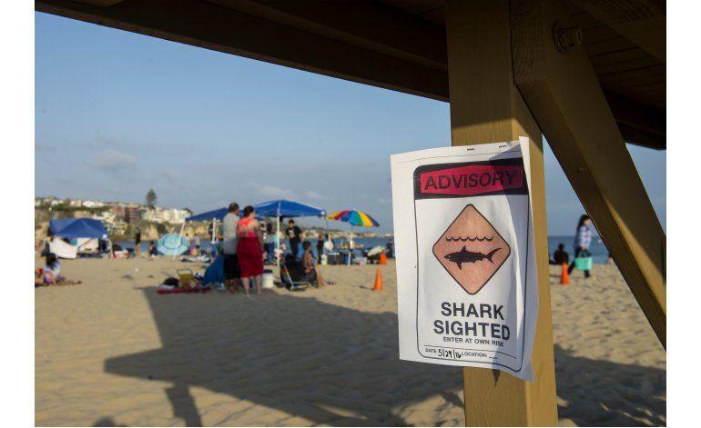 Mujer sufre ataque de tiburón en playa del sur de California