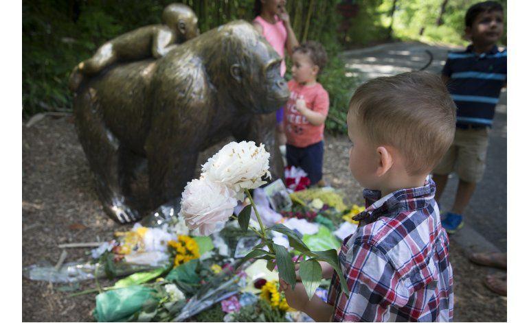 Tras matar a Harambe, zoo reabre exhibición de gorilas