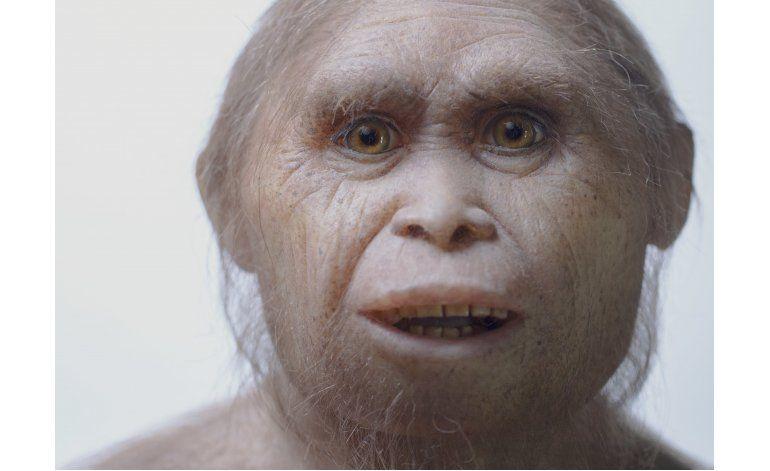 Restos remontan origen de hobbit a unos 700.000 años