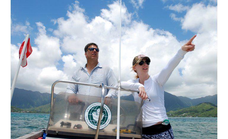 NASA y científicos analizarán bancos de coral desde el aire