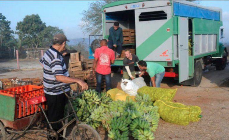 Cierran otro agromercado mayorista en Cuba