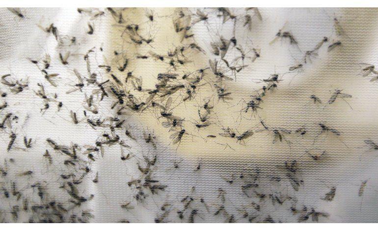 Nacen en EEUU tres bebés con defectos congénitos por zika