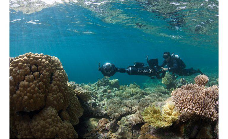 Nueva tecnología acelera el estudio de arrecifes coralinos