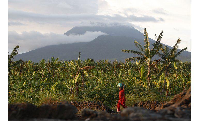 Tierra volcánica beneficia cultivo en Congo, pero hay riesgo