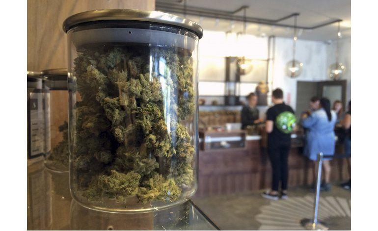 California: Votante decidirán la legalización de marihuana