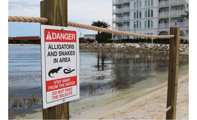 Había 2 caimanes en ataque donde murió niño en Florida