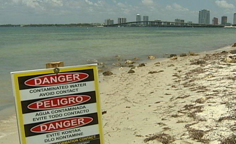 Continúa la alerta por aguas contaminadas en las playas de Miami