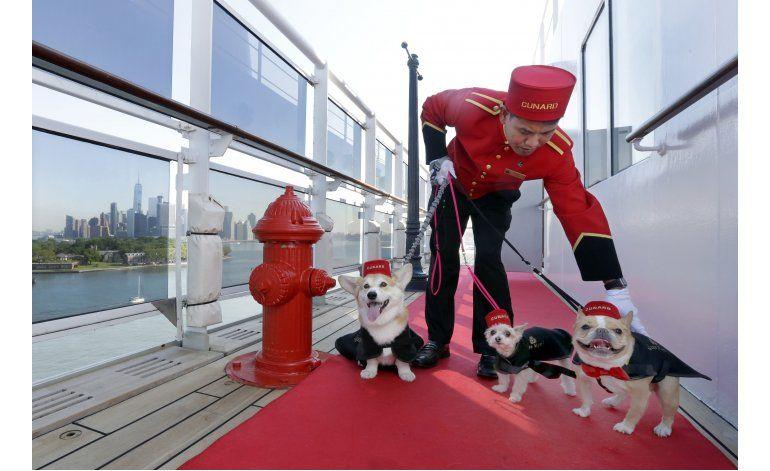 El crucero Queen Mary 2 tendrá nuevos servicios para perros