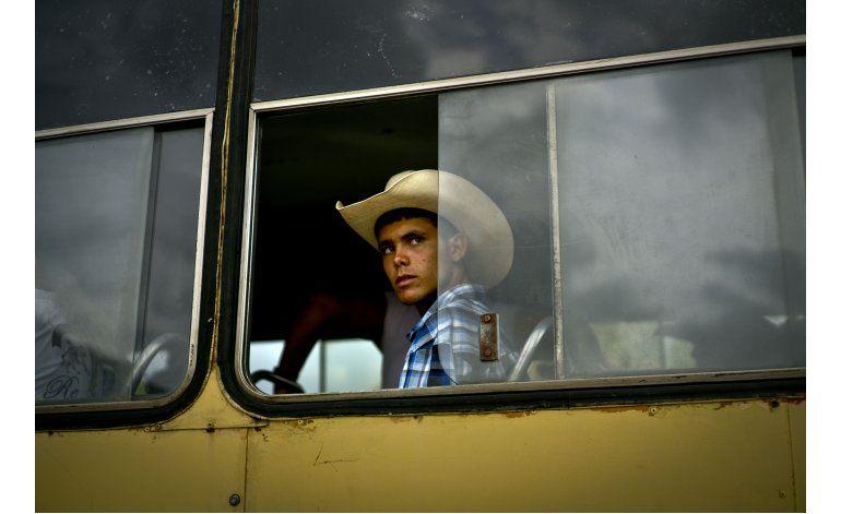 AP Fotos: Zonas ganaderas en Cuba preservan los rodeos