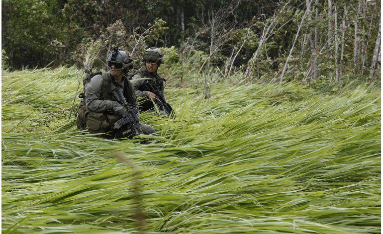 Colombia: Destruyen 104 laboratorios para procesar cocaína