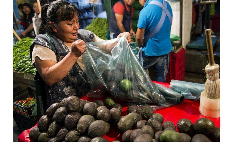 Altos precios del aguacate azuzan deforestación en México