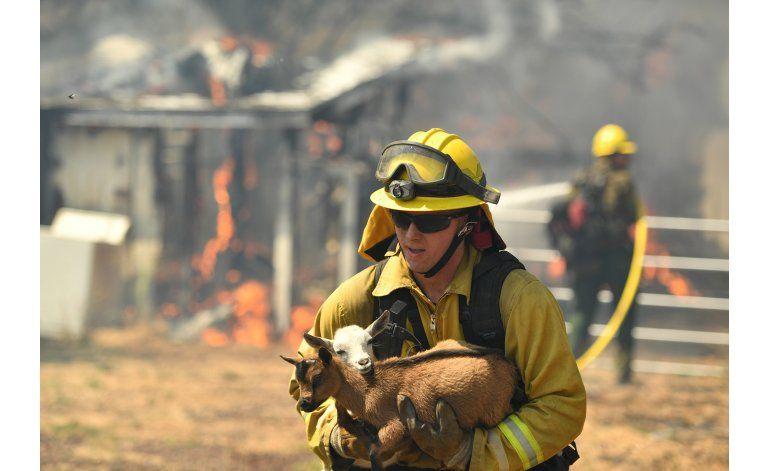 Incendio destruye 100 viviendas en pueblo de California