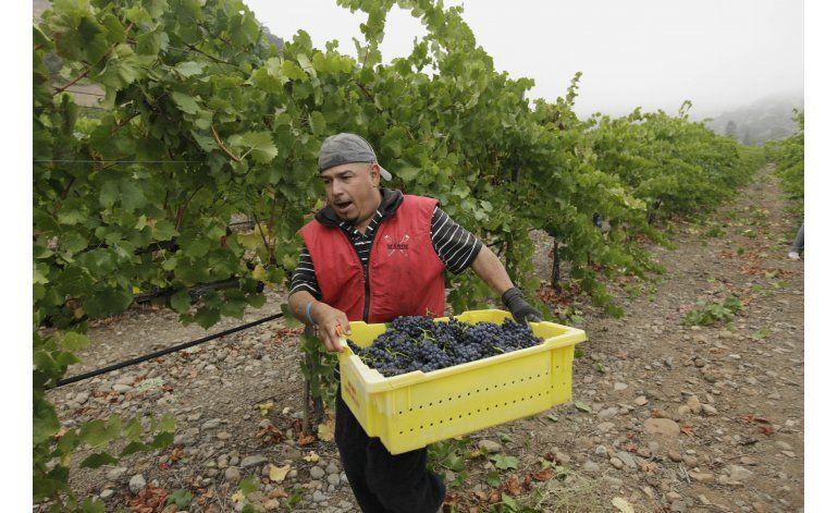 California retoma un plan sobre salario de peones agrícolas