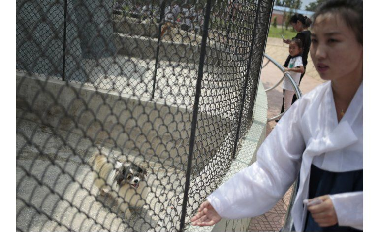 Zoológico de Pyongyang exhibe perros de todo tipo de razas