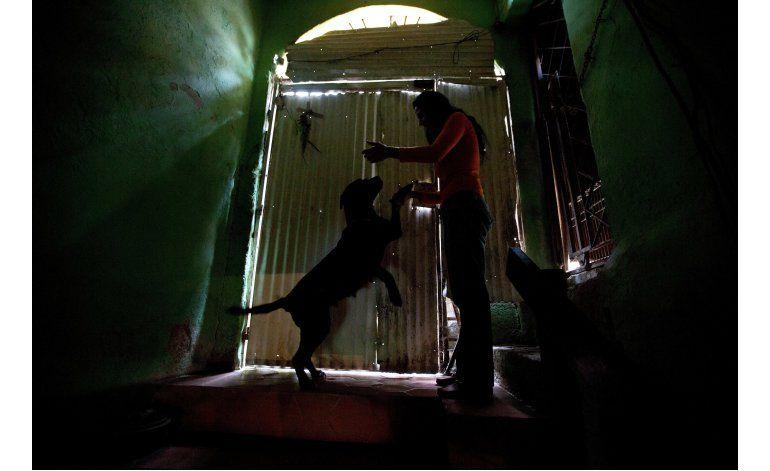 Crisis económica alcanza a mascotas en Venezuela