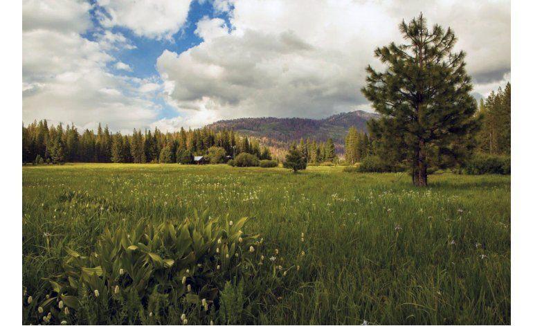Donan 160 hectáreas para ampliar el parque Yosemite