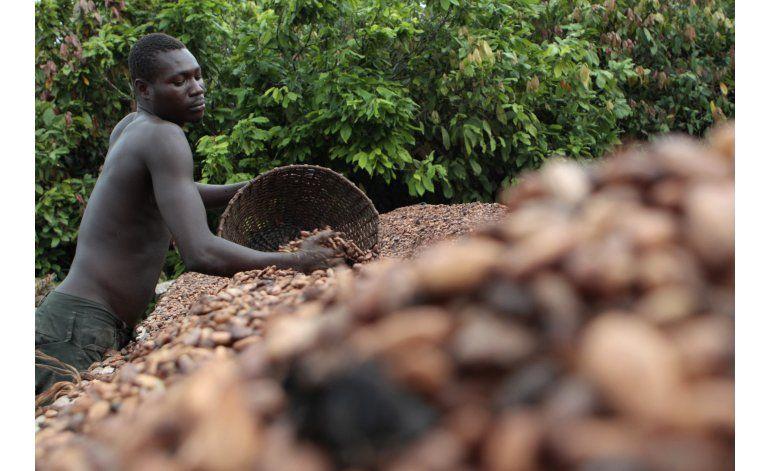 Jóvenes emprenden en el mayor productor de cacao del mundo