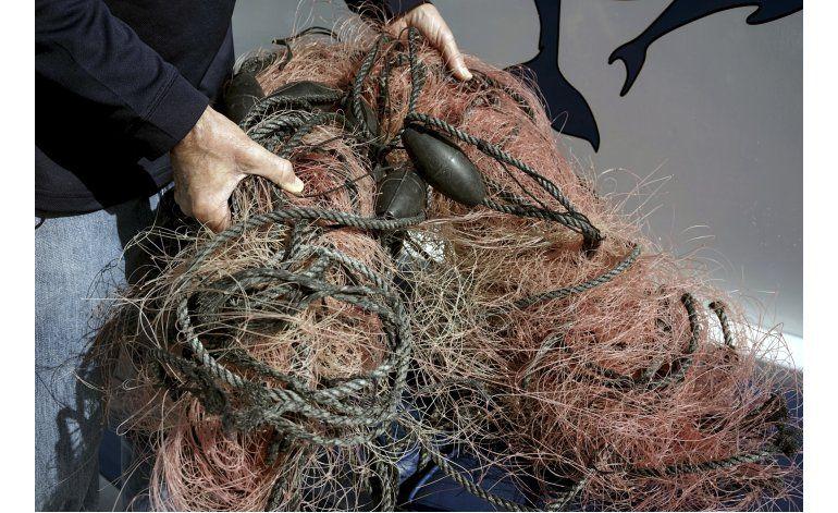 Protegen en California a ballenas de trampas para cangrejo