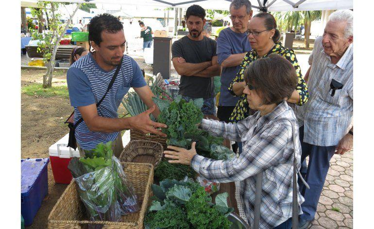 Puerto Rico halla un motor de crecimiento en la agricultura