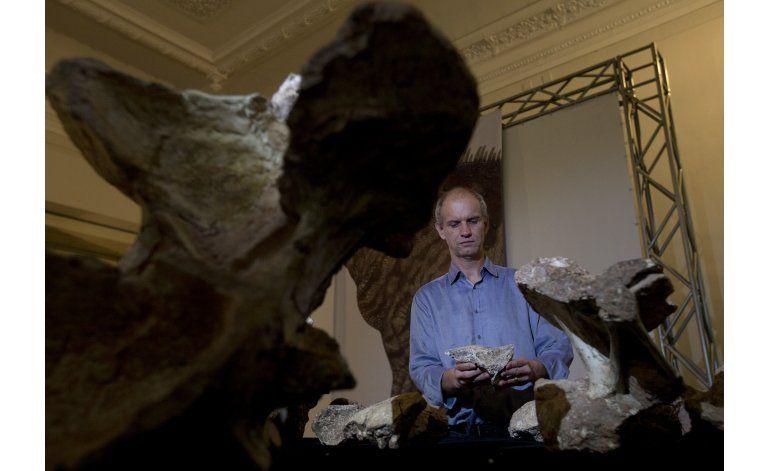 Hallan fósiles del dinosaurio más grande de Brasil