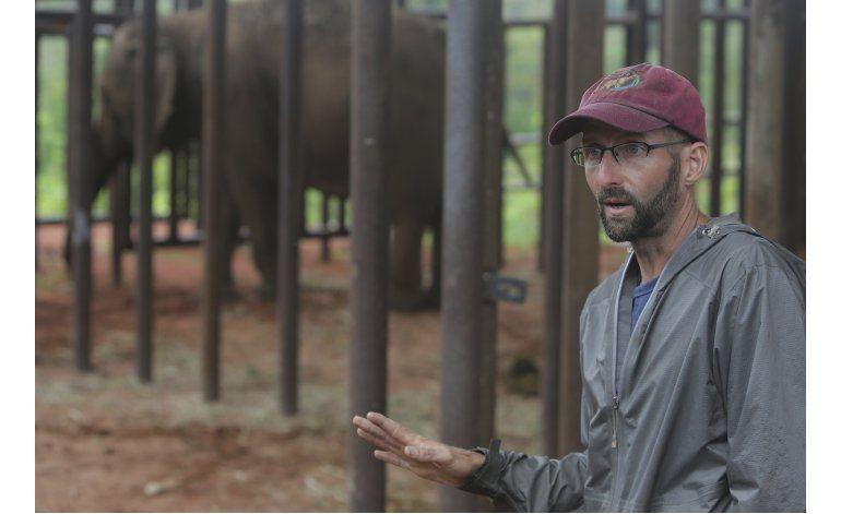 Brasil abre primer refugio de elefantes de Latinoamérica