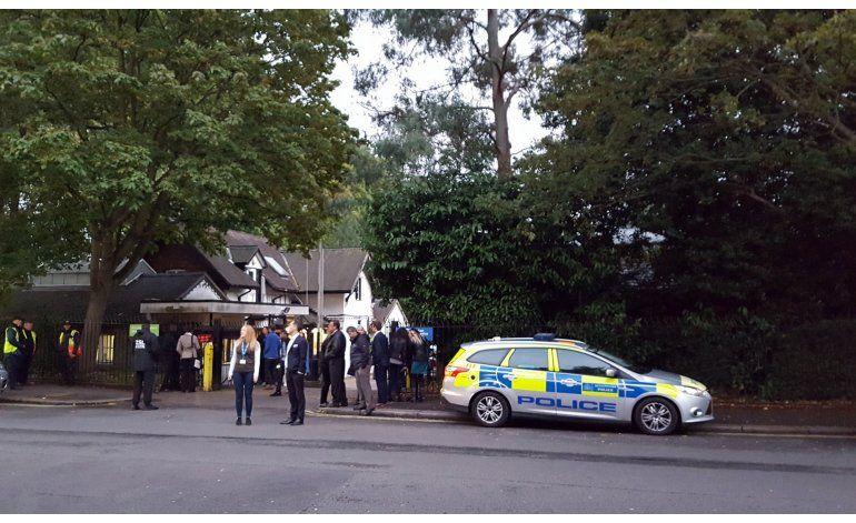 Recapturan a gorila que escapó del Zoológico de Londres