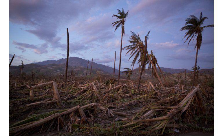 Huracán Matthew destruye agricultura de Haití
